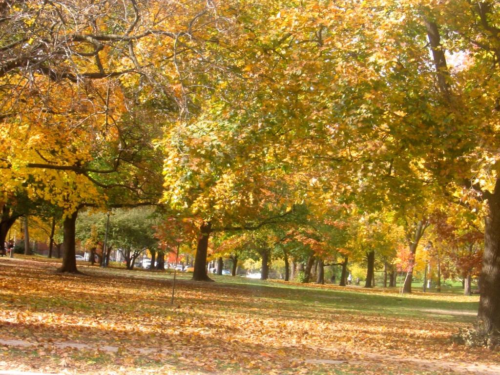 Queens Park, Toronto