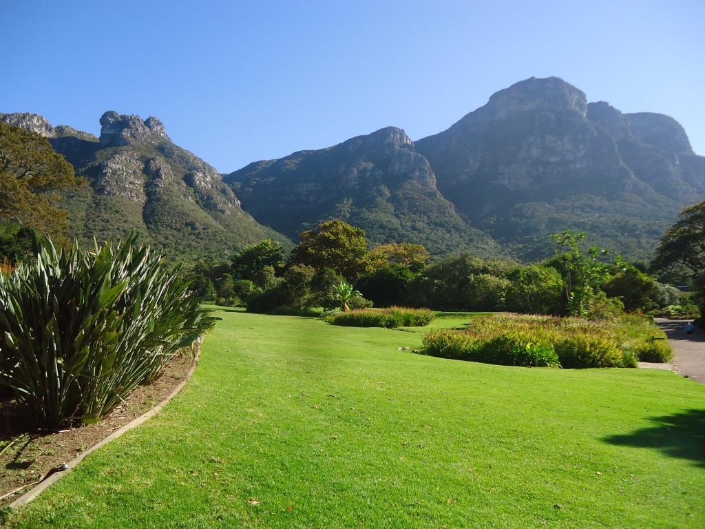 Kirstenbosch Gardens, Cape Town (May 2015)