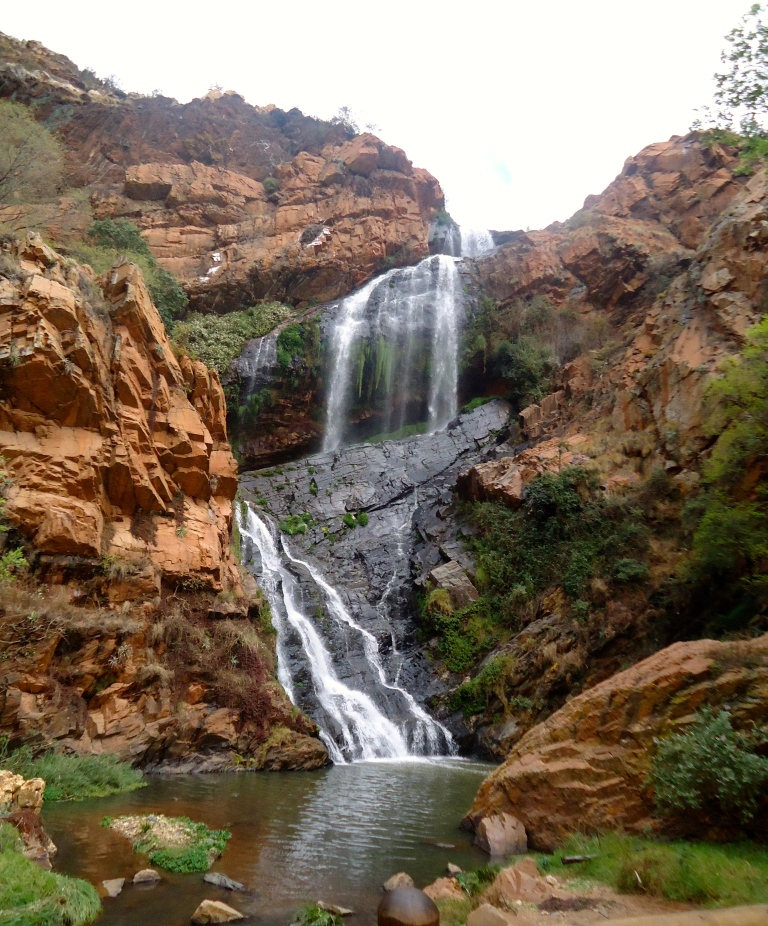 Witpoortjie waterfall , Walter Sisulu National Botanical Gardens (Joburg, Sept 2015)